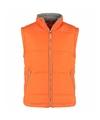 Heren bodywarmer Spring oranje